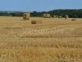 Ekopanely harvest 2017 - balers for strawboards production - manipulation to ware houses